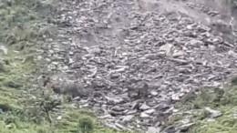 Sanyul Landslide